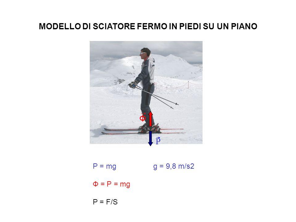 MODELLO DI SCIATORE FERMO IN PIEDI SU UN PIANO