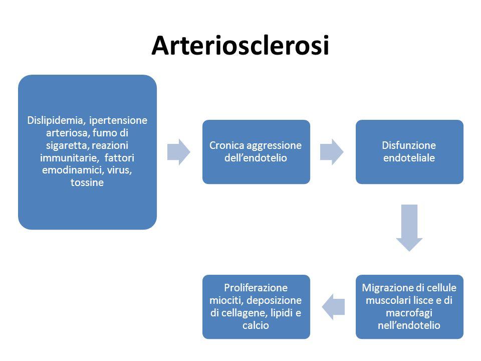 Arteriosclerosi Dislipidemia, ipertensione arteriosa, fumo di sigaretta, reazioni immunitarie, fattori emodinamici, virus, tossine.
