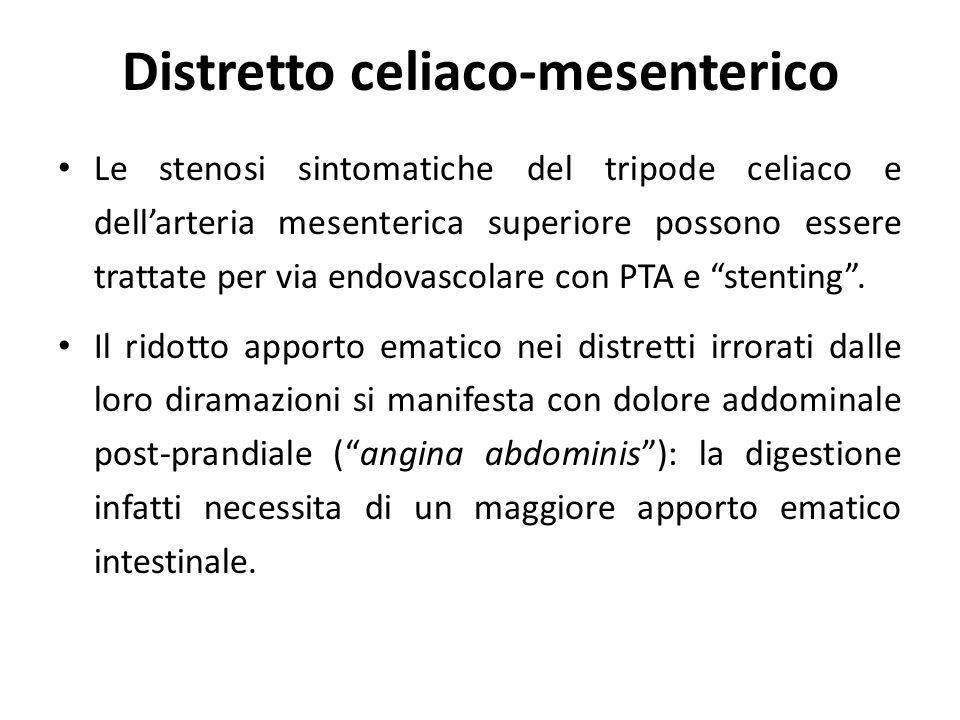 Distretto celiaco-mesenterico