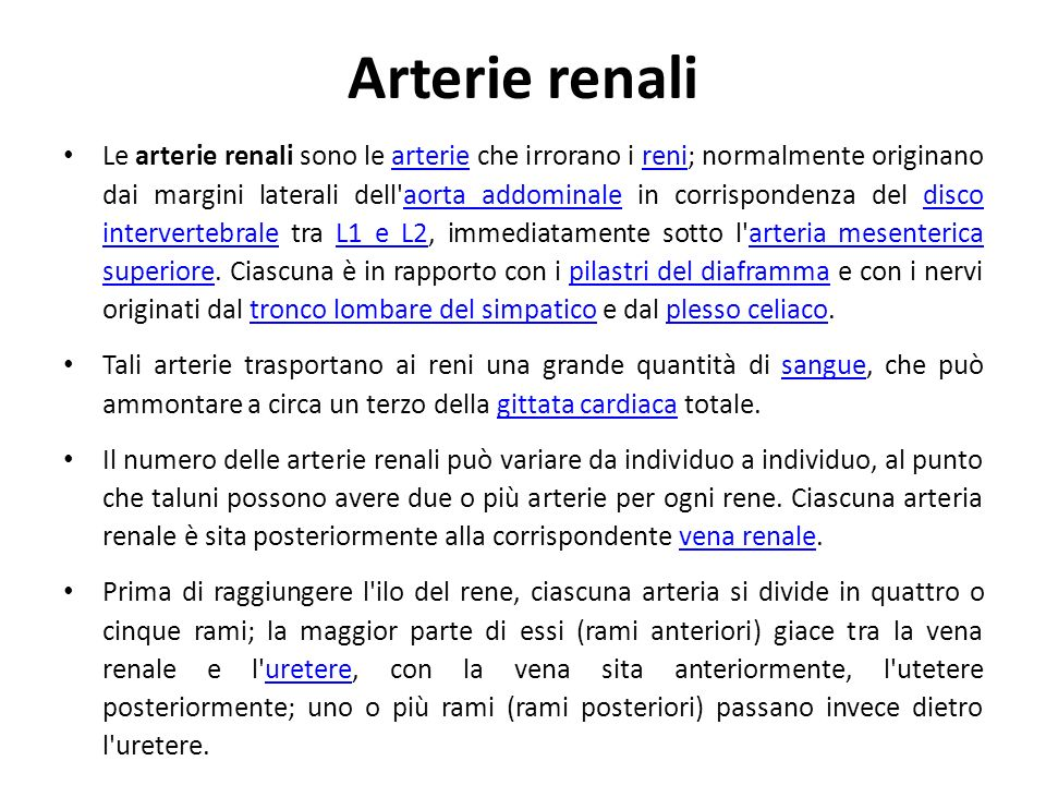 Arterie renali