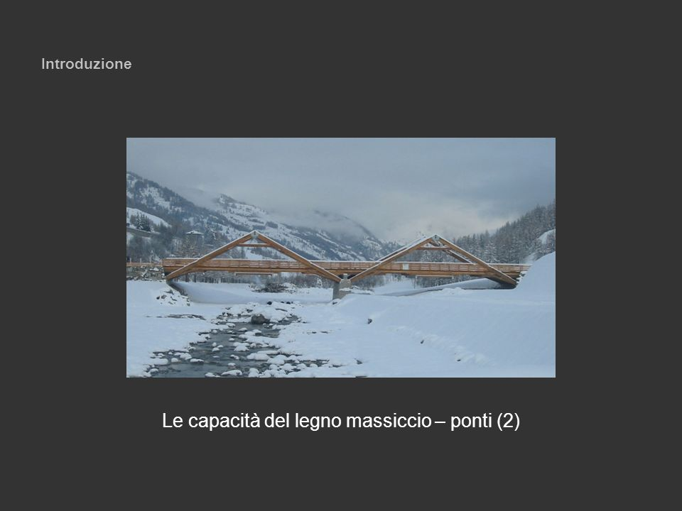 Le capacità del legno massiccio – ponti (2)