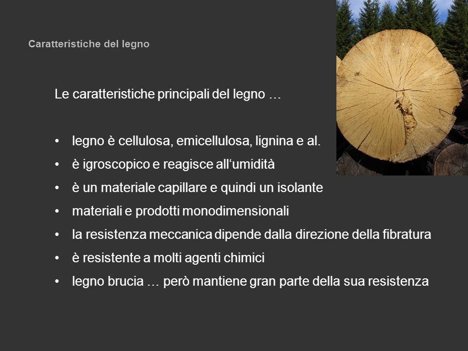Caratteristiche del legno