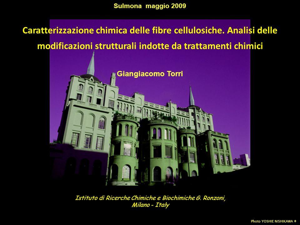 Istituto di Ricerche Chimiche e Biochimiche G. Ronzoni,
