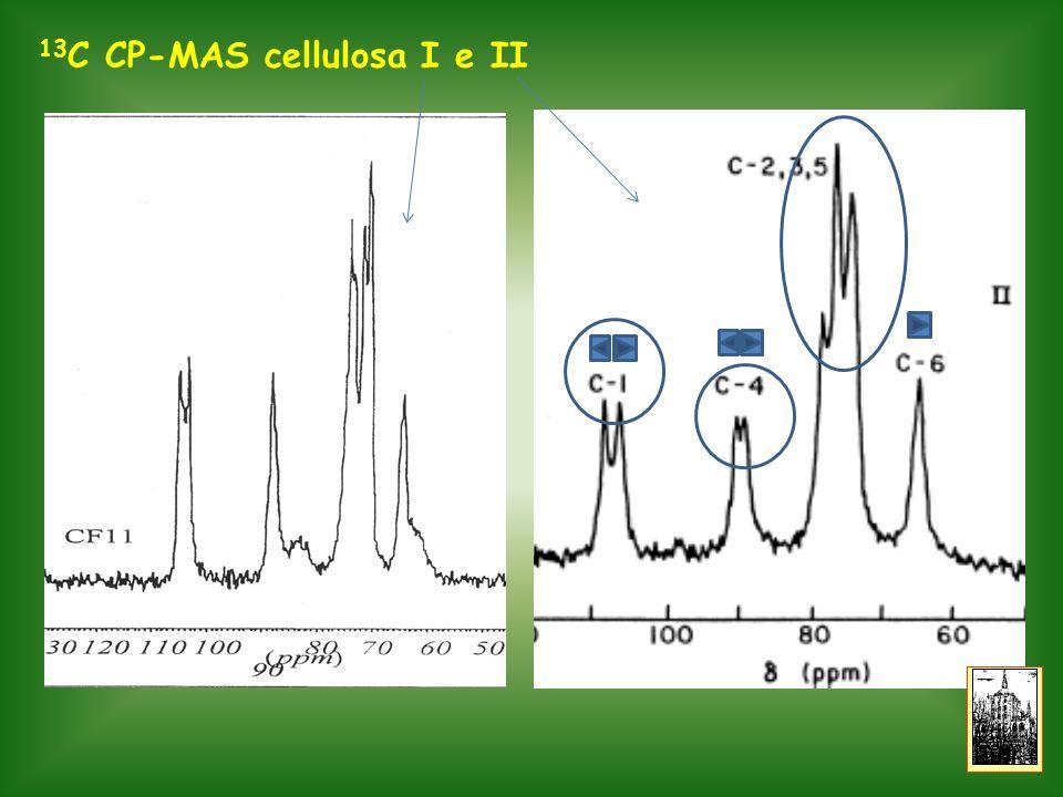 13C CP-MAS cellulosa I e II