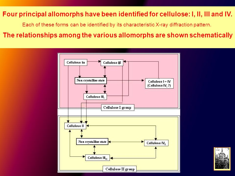 The relationships among the various allomorphs are shown schematically