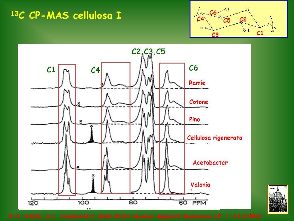 13C CP-MAS cellulosa I C2,C3,C5 C6 C1 C4 C6 C4 C5 C2 C1 C3 Ramie