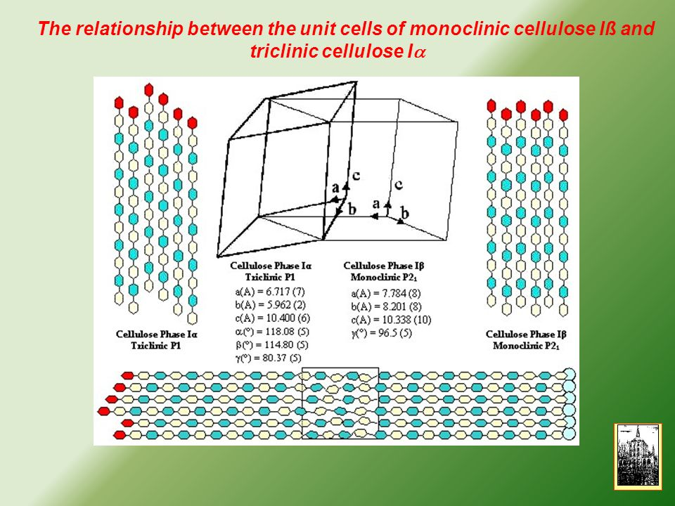 The relationship between the unit cells of monoclinic cellulose Iß and triclinic cellulose Ia