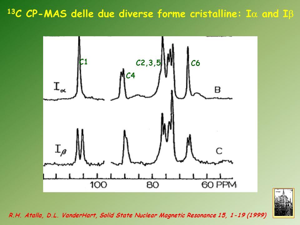 13C CP-MAS delle due diverse forme cristalline: Ia and Ib