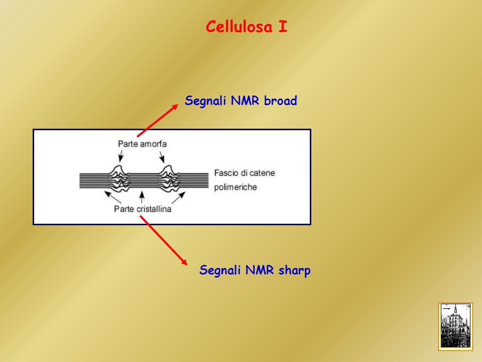 Cellulosa I Segnali NMR broad Segnali NMR sharp