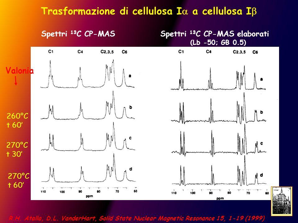 Trasformazione di cellulosa Ia a cellulosa Ib