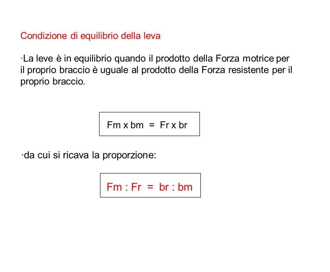 Fm : Fr = br : bm ·da cui si ricava la proporzione: