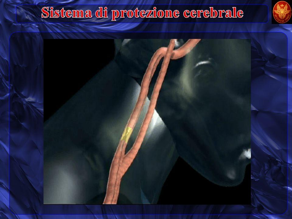 Sistema di protezione cerebrale
