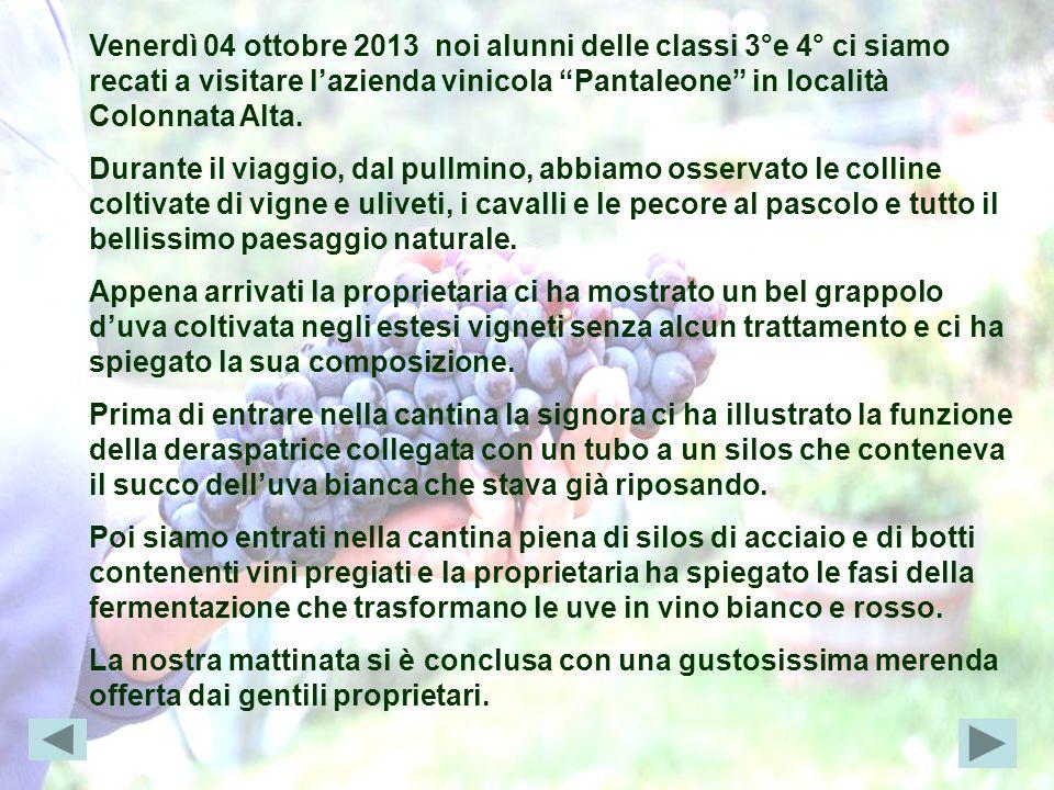 Venerdì 04 ottobre 2013 noi alunni delle classi 3°e 4° ci siamo recati a visitare l'azienda vinicola Pantaleone in località Colonnata Alta.