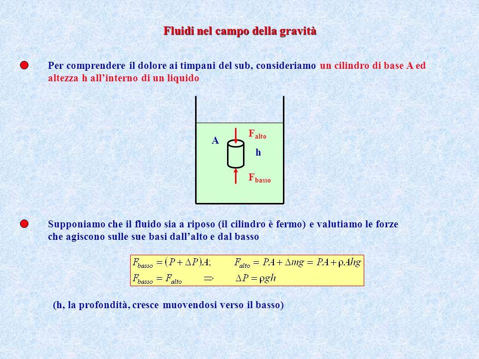 Fluidi nel campo della gravità