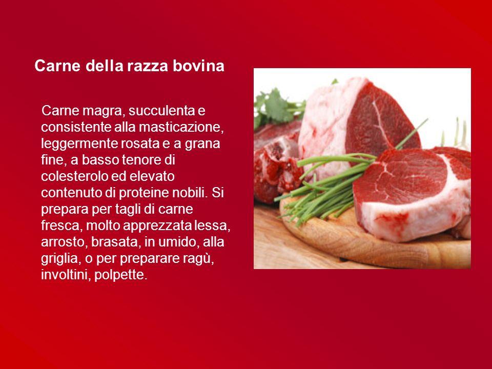 Carne della razza bovina