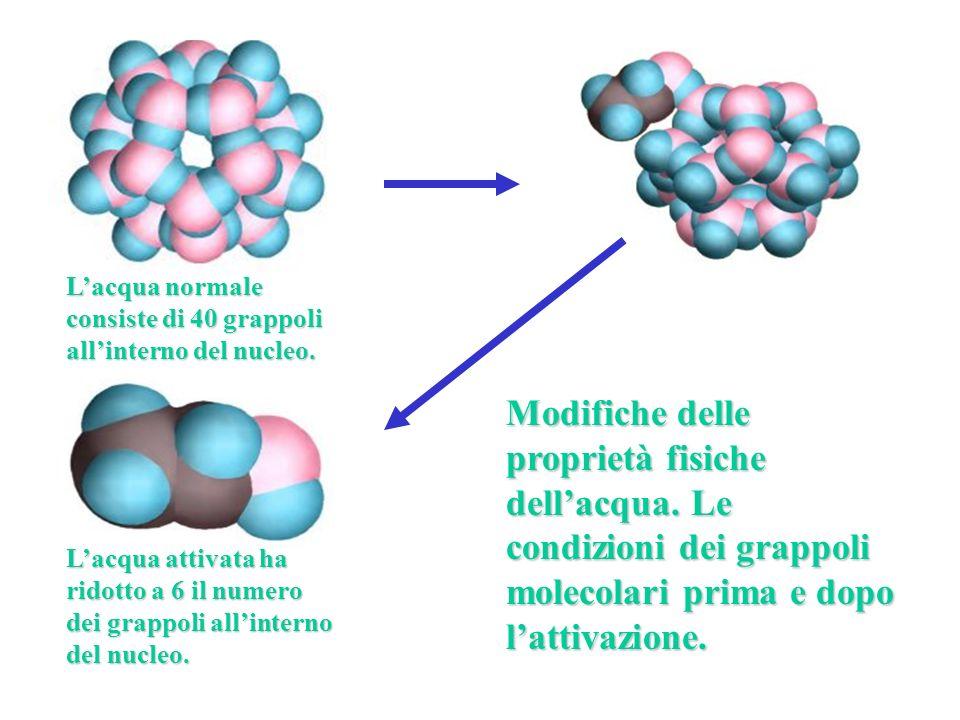 L'acqua normale consiste di 40 grappoli all'interno del nucleo.
