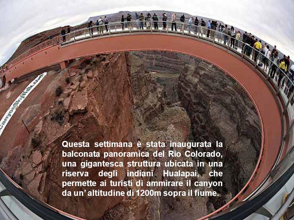 Questa settimana è stata inaugurata la balconata panoramica del Rio Colorado, una gigantesca struttura ubicata in una riserva degli indiani Hualapai, che permette ai turisti di ammirare il canyon da un' altitudine di 1200m sopra il fiume.