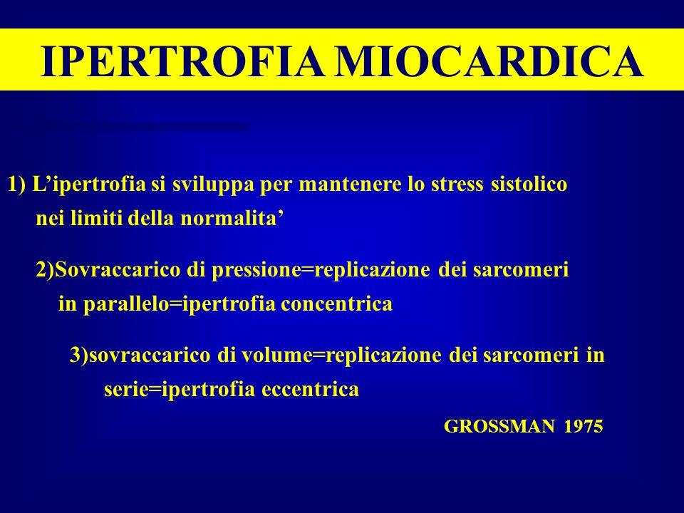 IPERTROFIA MIOCARDICA