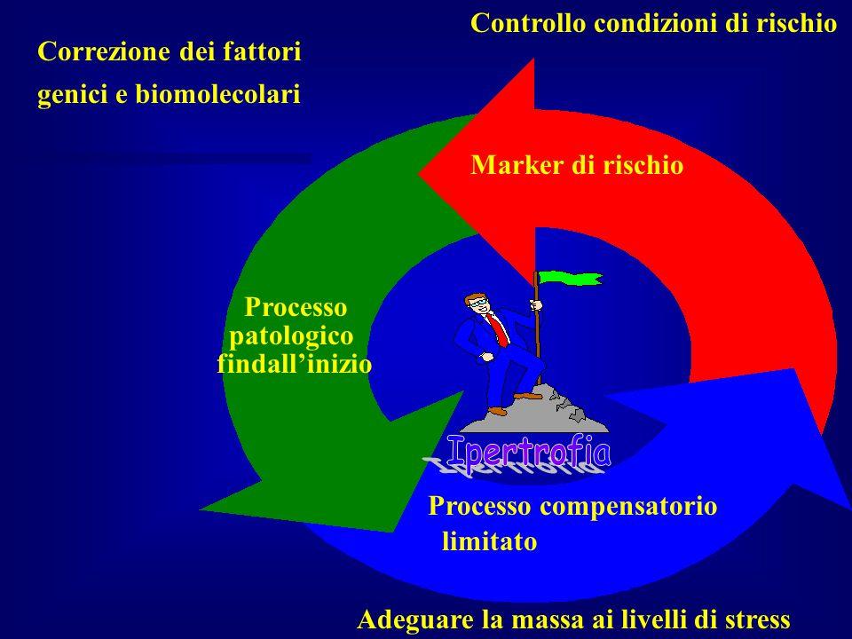 Correzione dei fattori genici e biomolecolari Processo compensatorio