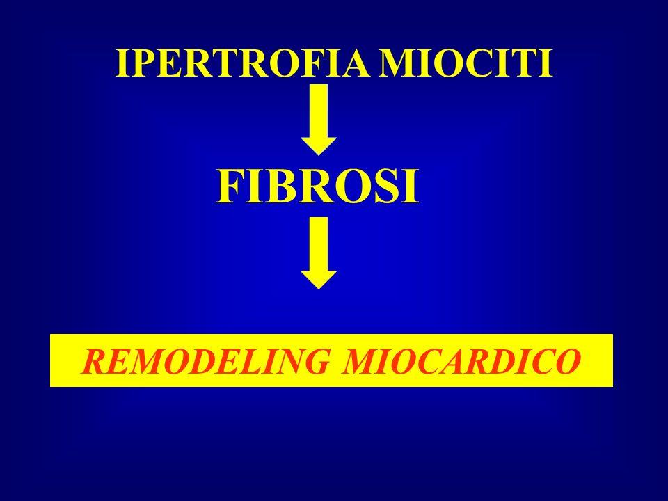 REMODELING MIOCARDICO