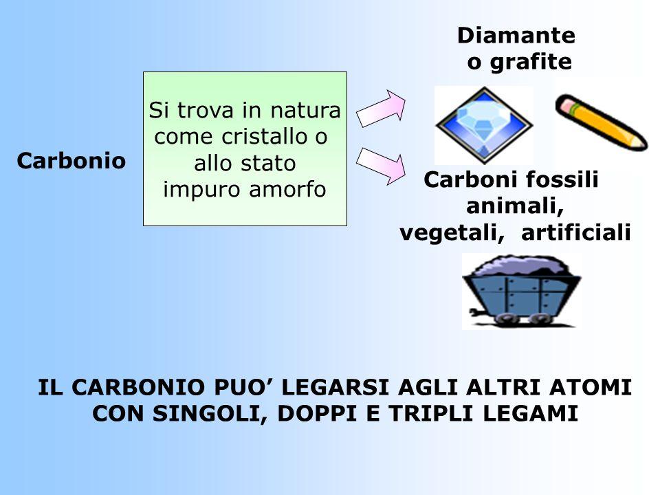 IL CARBONIO PUO' LEGARSI AGLI ALTRI ATOMI