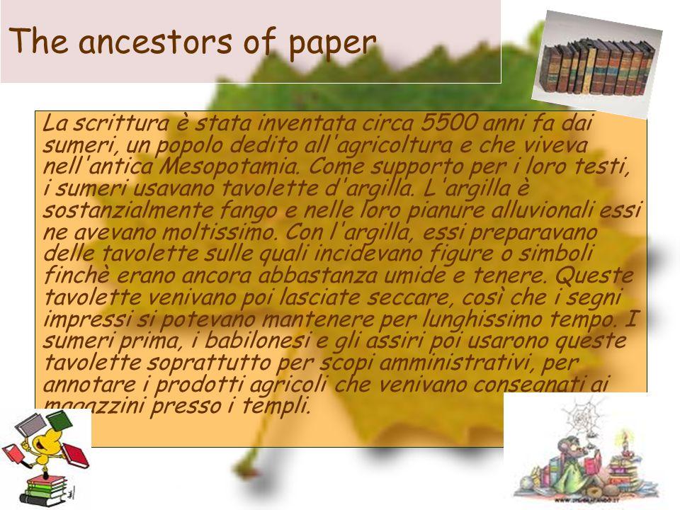 The ancestors of paper