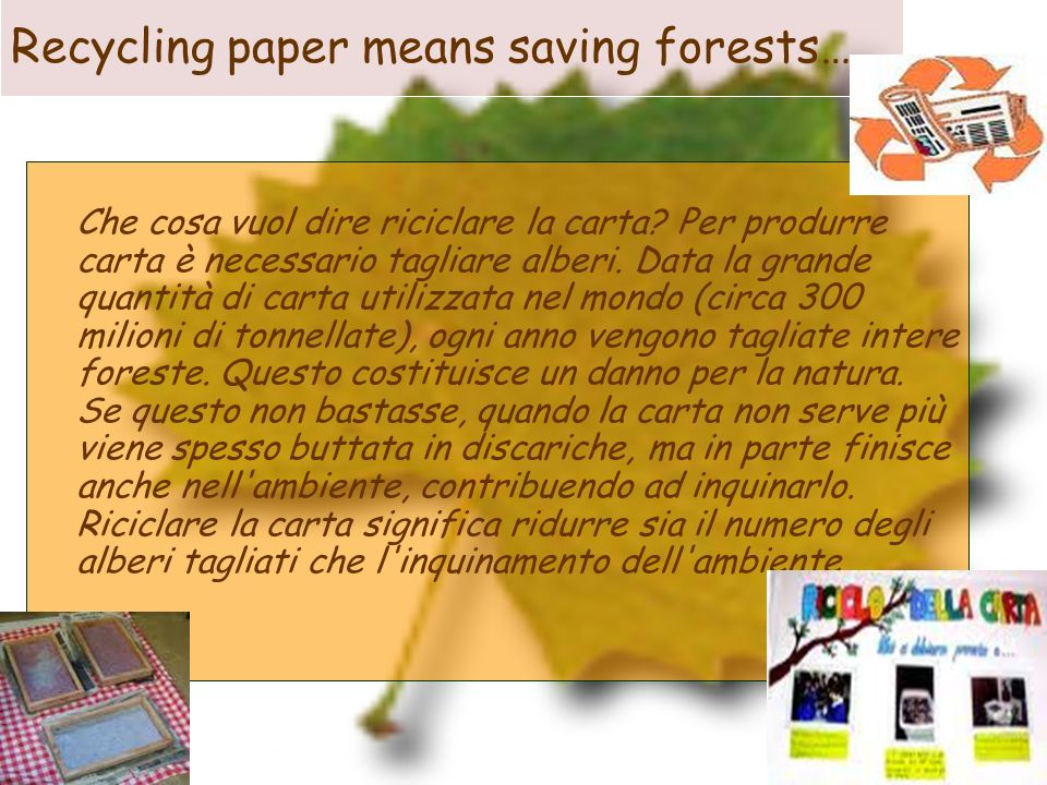 Recycling paper means saving forests…