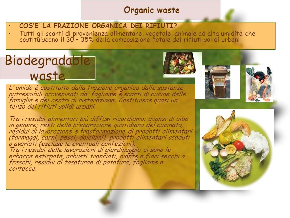 Biodegradable waste Organic waste