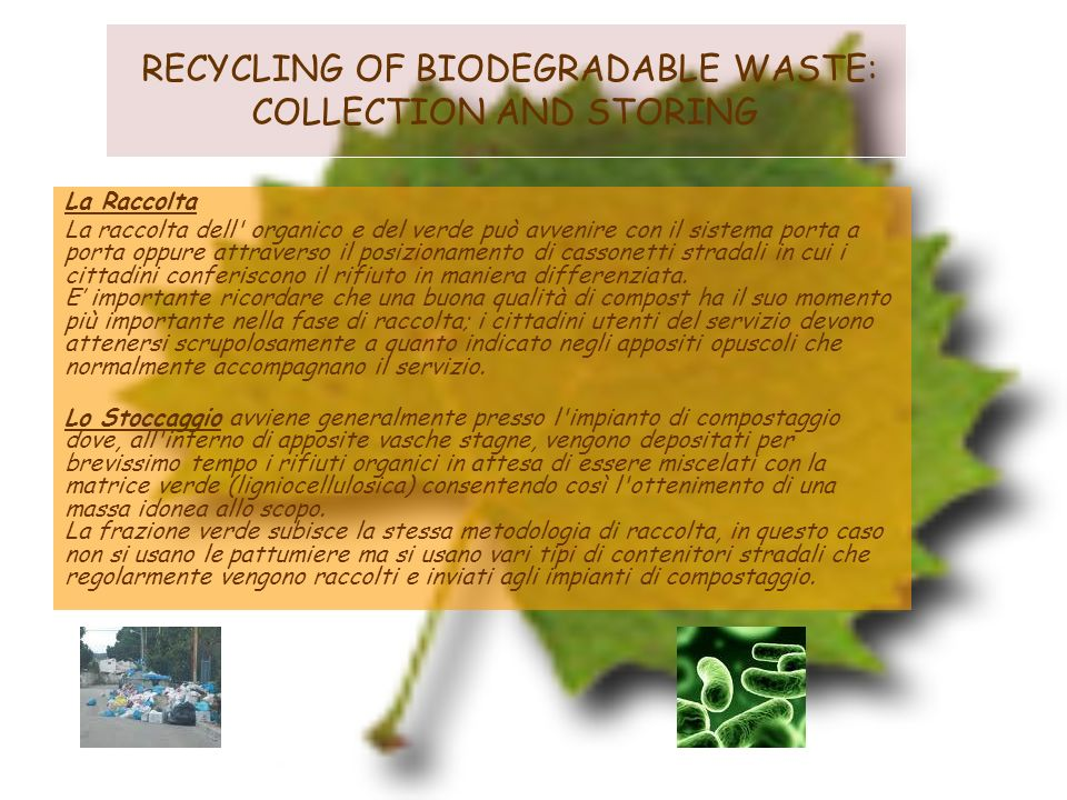 RECYCLING OF BIODEGRADABLE WASTE: COLLECTION AND STORING
