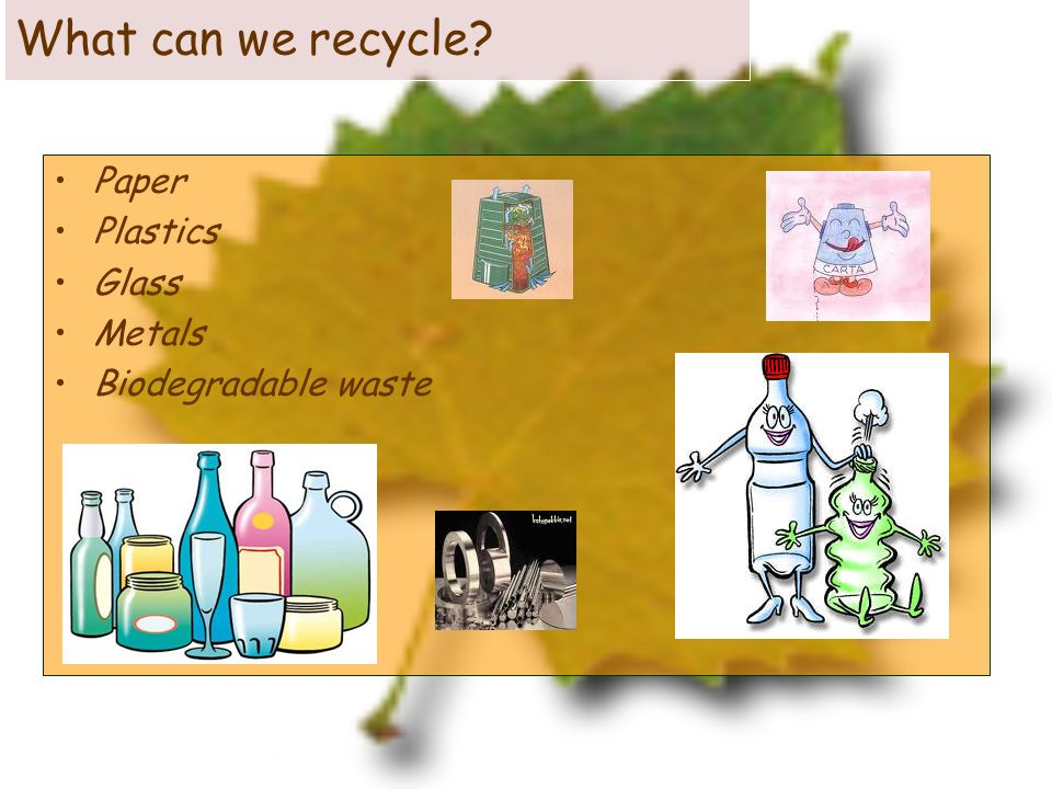 What can we recycle Paper Plastics Glass Metals Biodegradable waste