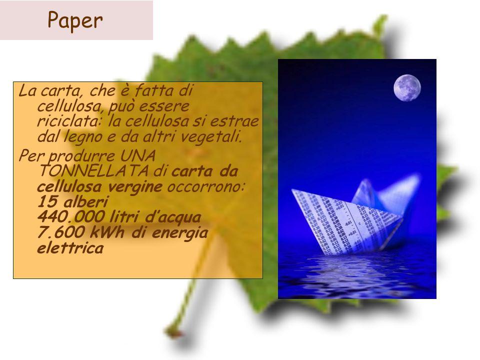 PaperLa carta, che è fatta di cellulosa, può essere riciclata: la cellulosa si estrae dal legno e da altri vegetali.