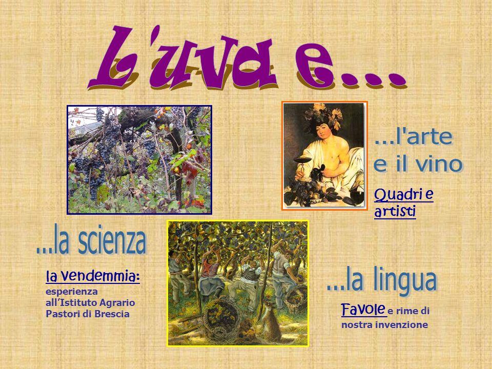 L uva e... ...l arte. e il vino. Quadri e artisti. ...la scienza. la vendemmia: esperienza all'Istituto Agrario Pastori di Brescia.