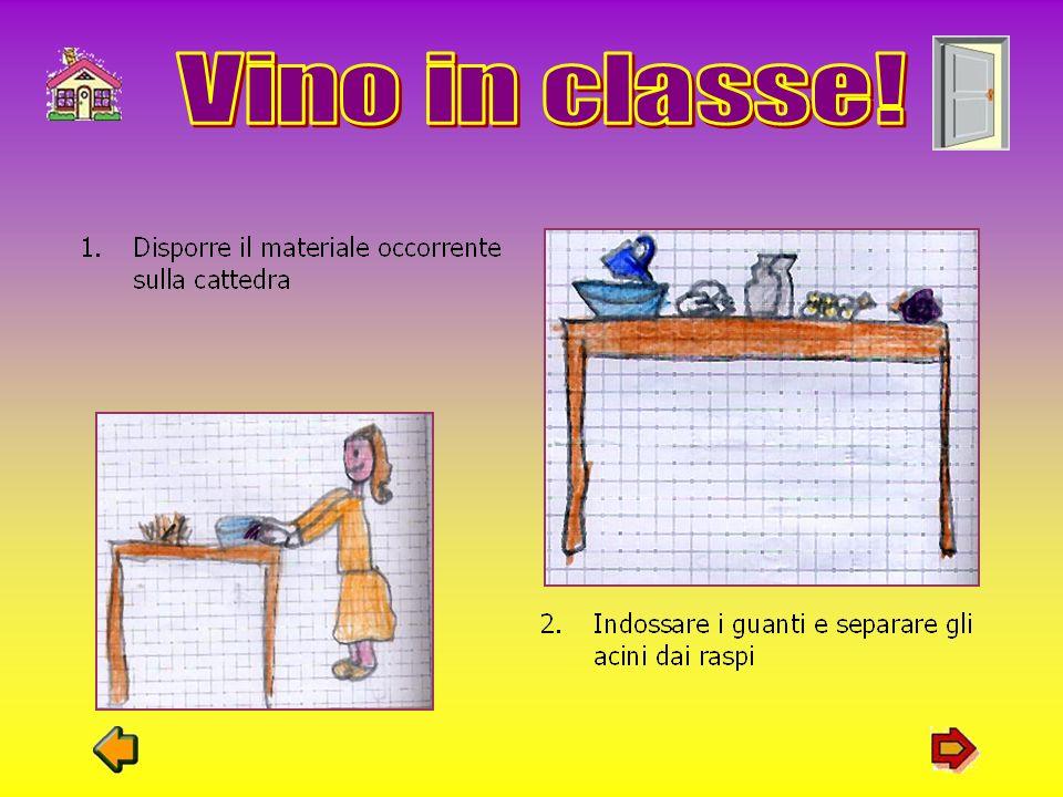 Vino in classe!