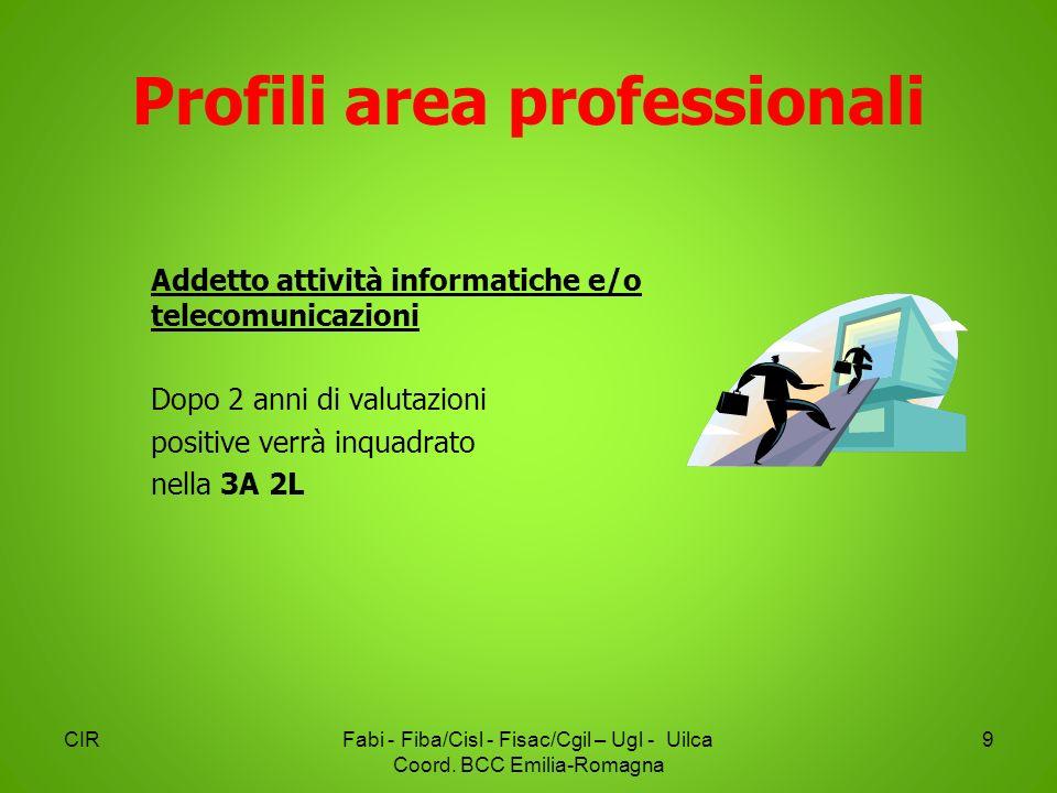 Profili area professionali