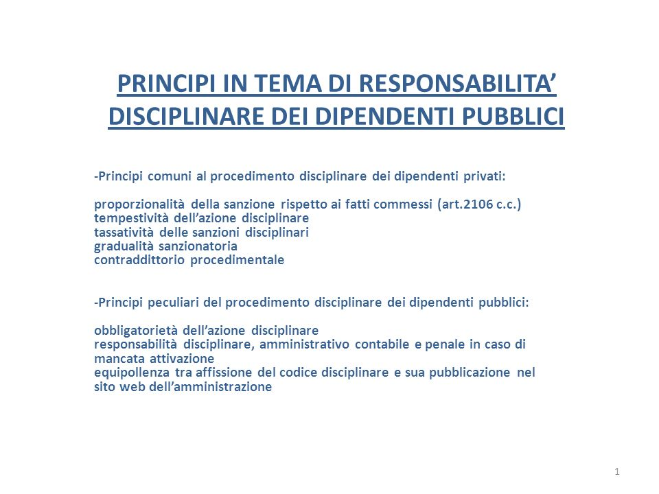 PRINCIPI IN TEMA DI RESPONSABILITA' DISCIPLINARE DEI DIPENDENTI PUBBLICI