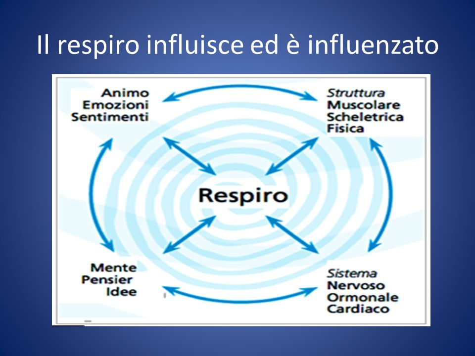 Il respiro influisce ed è influenzato