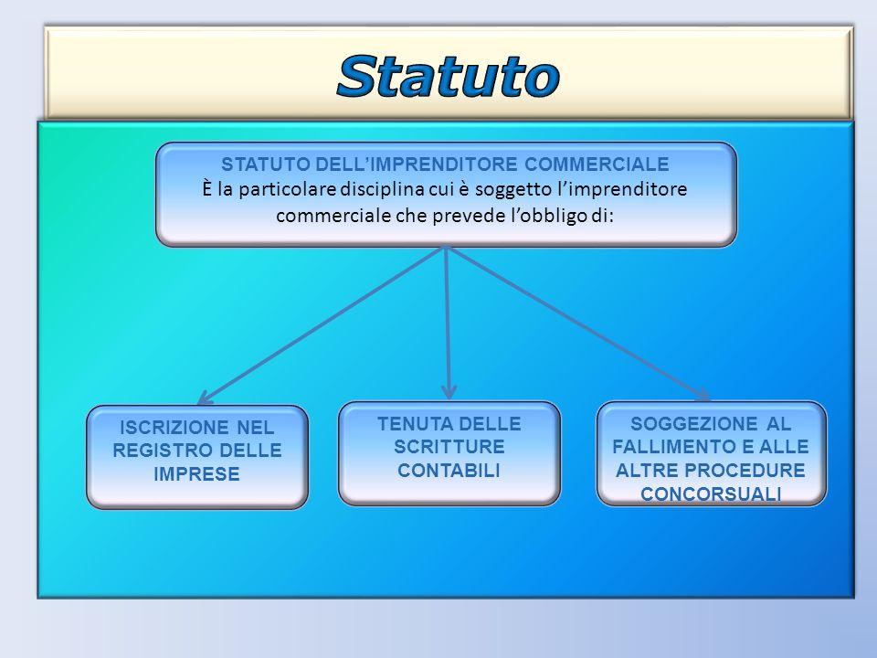 STATUTO DELL'IMPRENDITORE COMMERCIALE