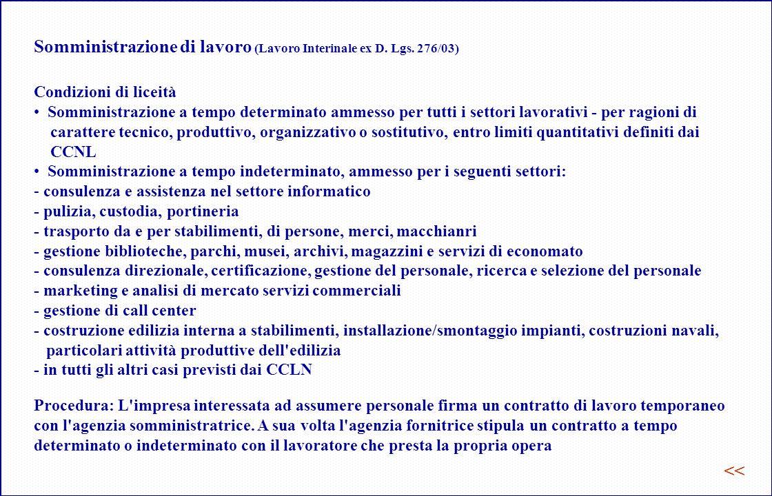 Somministrazione di lavoro (Lavoro Interinale ex D. Lgs. 276/03)