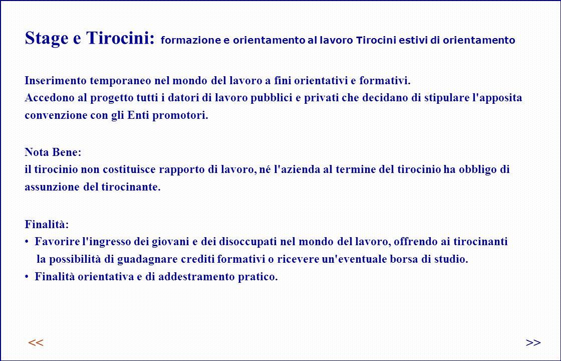 Stage e Tirocini: formazione e orientamento al lavoro Tirocini estivi di orientamento