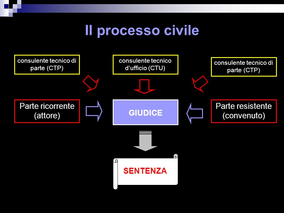 Il processo civile Parte ricorrente (attore)