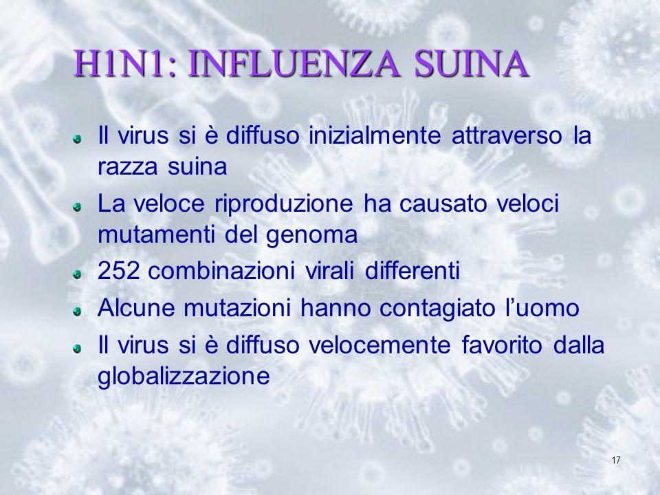 H1N1: INFLUENZA SUINA Il virus si è diffuso inizialmente attraverso la razza suina. La veloce riproduzione ha causato veloci mutamenti del genoma.