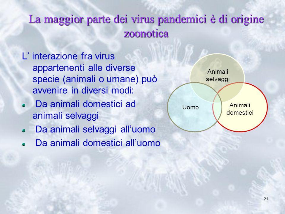 La maggior parte dei virus pandemici è di origine zoonotica