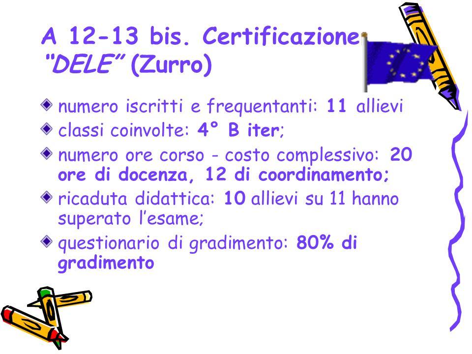 A 12-13 bis. Certificazione DELE (Zurro)