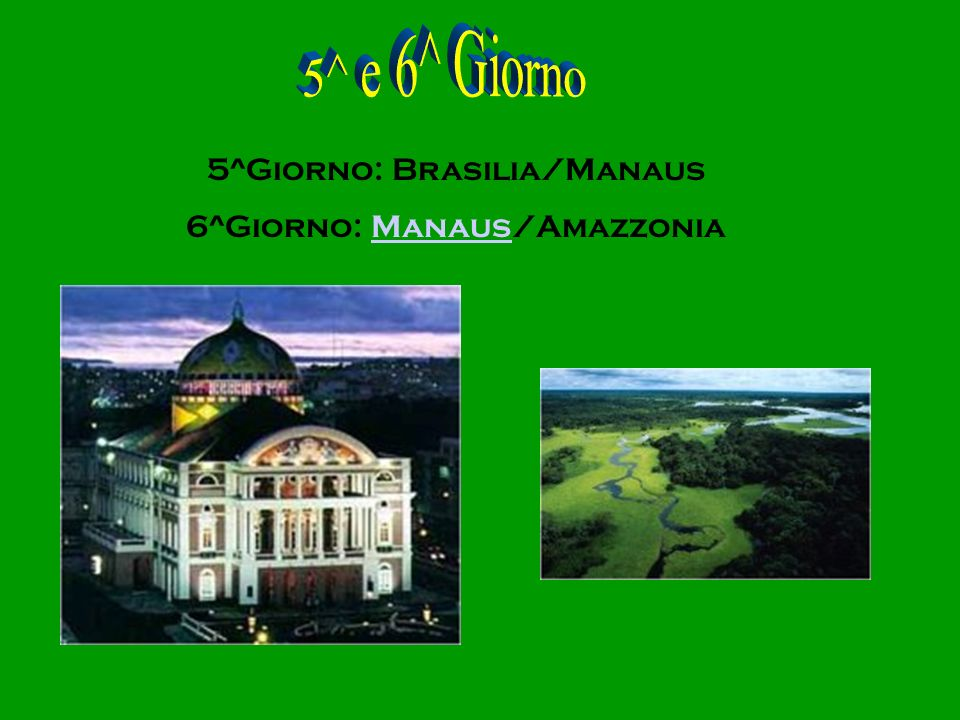 5^ e 6^ Giorno 5^Giorno: Brasilia/Manaus 6^Giorno: Manaus/Amazzonia
