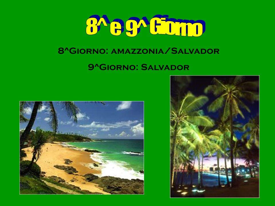 8^Giorno: amazzonia/Salvador