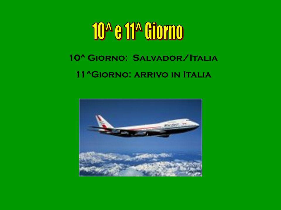 10^ e 11^ Giorno 10^ Giorno: Salvador/Italia