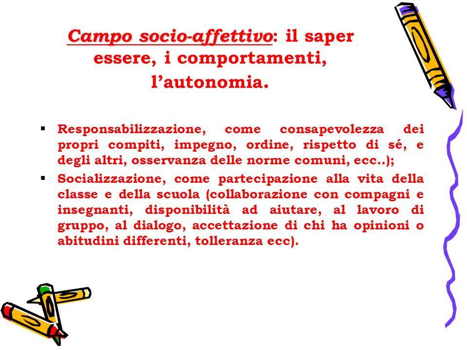 Campo socio-affettivo: il saper essere, i comportamenti, l'autonomia.