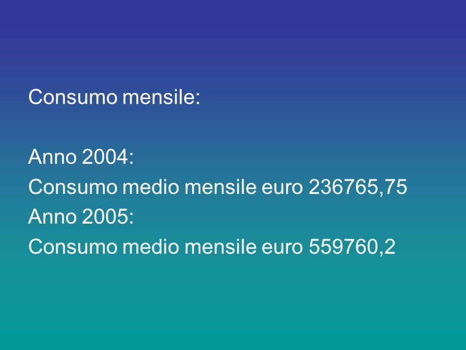 Consumo mensile: Anno 2004: Consumo medio mensile euro 236765,75.
