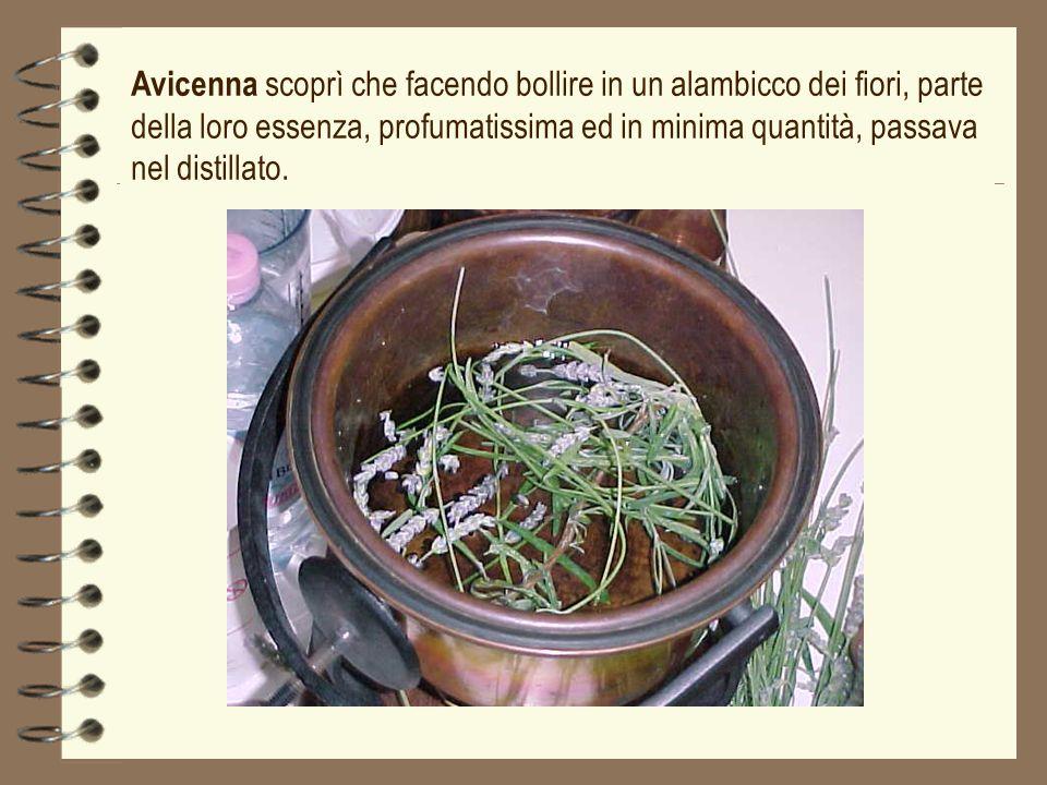 Avicenna scoprì che facendo bollire in un alambicco dei fiori, parte