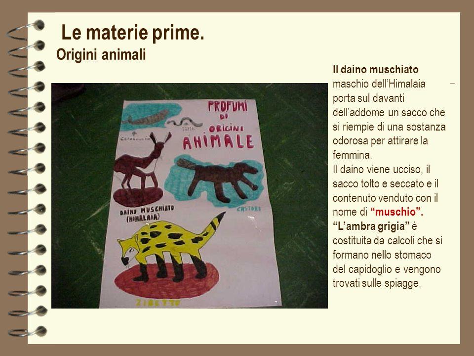 Le materie prime. Origini animali